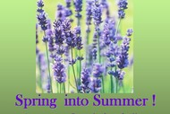 Spring Into Summer - A Concert by Octavius Chamber Choir.