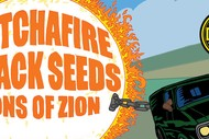 Katchafire, The Black Seeds & Sons Of Zion.