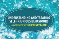 Understanding and Treating Self-Harming Behaviours.