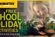 Animates Napier – School Holiday Activities.