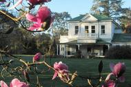 Gwavas Garden, House & Puahanui Bush Tour.