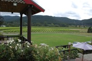 F.A.W.C! Vines, Dine & Views: Mitzi & Twinn + Valley d'Vine.