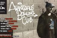 Avantdale Bowling Club NZ Tour.