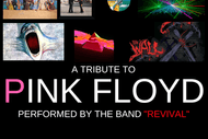 Comfortably Numb New Zealand'S Premiere Pink Floyd Tribute.