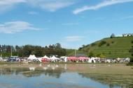 Puketapu Auction and Fair.