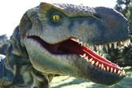 DinoFest Hawkes Bay.