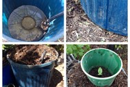 Self Watering Containers for Easier Edible Growing.