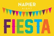 Napier Night Fiesta.