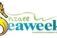 Seaweek - Whakamahia Beach Clean.