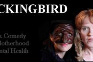 Mockingbird.