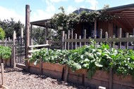 Introduction to Permaculture Design Course.