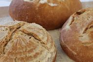 Sourdough Breadmaking Workshop.